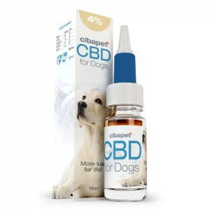 cbd-oil-for-dogs-4