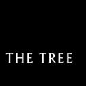 THE TREE CBD: RESPETO POR LA NATURALEZA