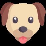 CBD dla Psa