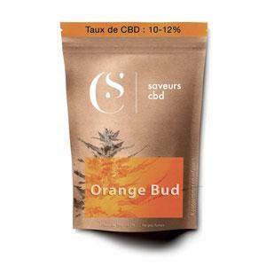 Orange_Bud