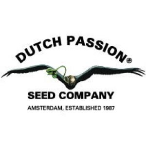 dutch-passion-logo
