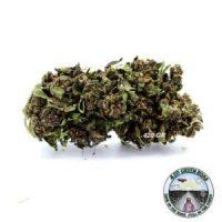 Purple-CBD