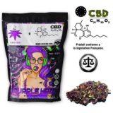 Purple-Haze-CDUCBD-weed-cbd-chanvre-cannabis