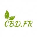 Avis sur la boutique & marque CBD.fr : véritables experts du chanvre CBD