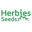 Herbies Seeds Avis : l'une des meilleures banques de graines du moment