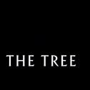 The Tree CBD : cosmétiques ou fleurs bio ? Notre avis sur la marque espagnole