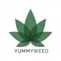 YummyWeed : du CBD Luxembourgeois en livraison express